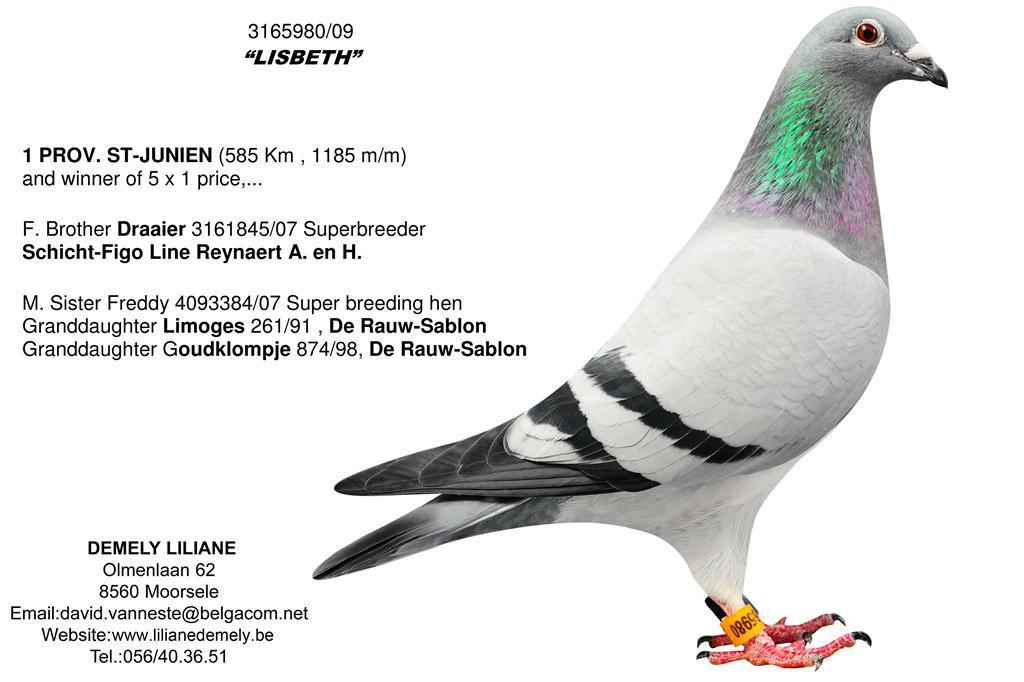 BE09-3165890 Lisbeth