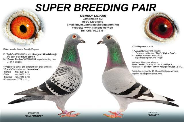 Super Breeding Paur