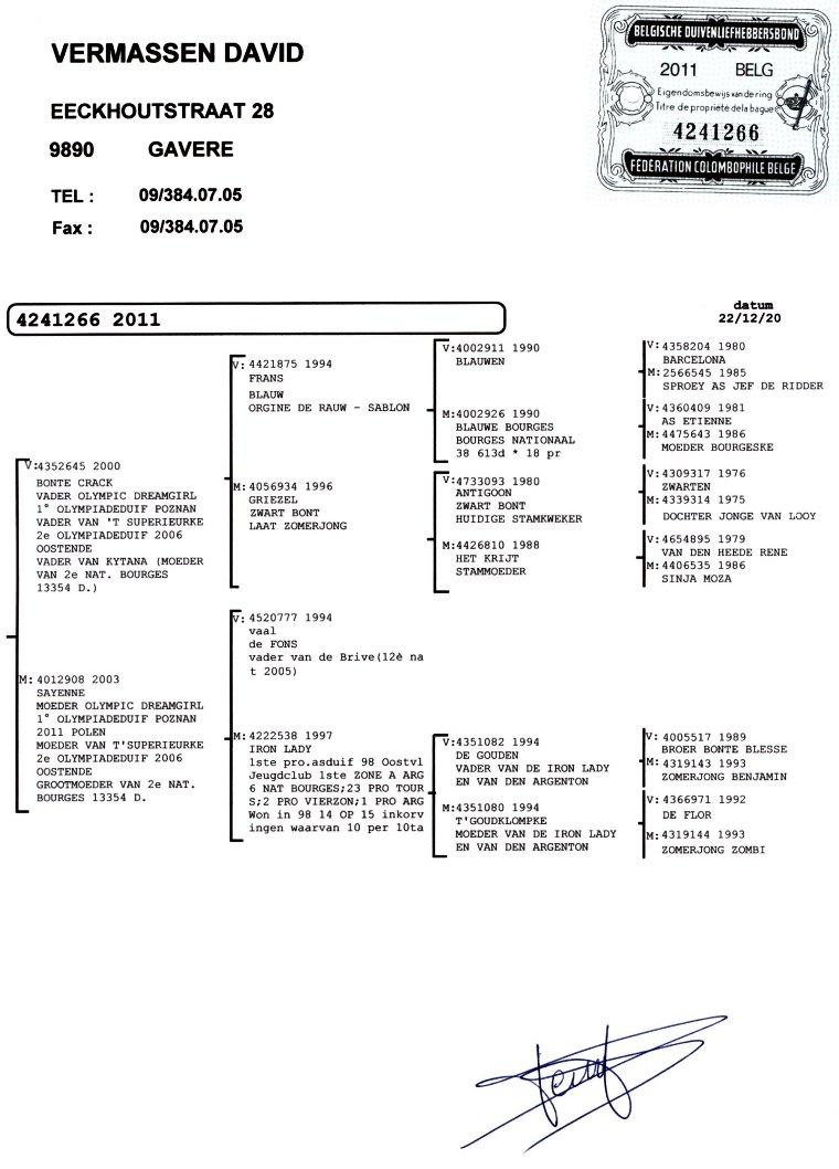 BE11-4241266_stamboom