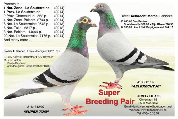 Super Breeding Pair